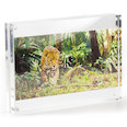 with magnetic catch, made of acrylic glass (transparent), for portrait or landscape format